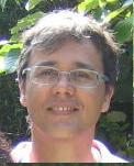Antoine Rauzy : Professor, Supelec